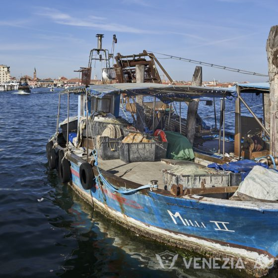Lido, Pellestrina, and Chioggia: 3 pearls you can not miss - Venetian island - Venezia Autentica | Discover and Support the Authentic Venice - The Venetian islands Lido, Pellestrina and Chioggia are must-visit cities that will challenge what you think you knew about Venice, Italy